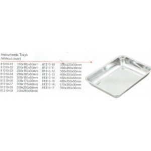 Δίσκος inox απλός 200x150x50mm