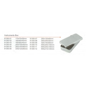 Kυτίο inox εργαλείων με κλιπς 250x120x60